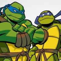 Which Teenage Mutant Ninja Turtle Are You?